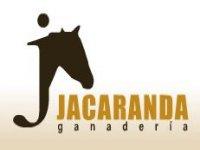 Ganadería Jacaranda