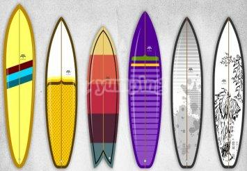 A collection of different surfboards