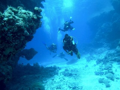 D & P Marine Diving