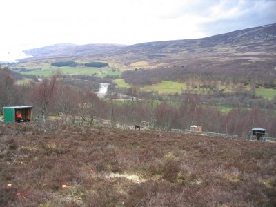 Dell Glenlivet Clay Pigeon Shooting Ground