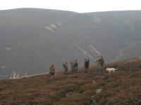 Hiking on the moor