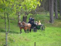 Have a ride with Glen Tanar Horse Riding