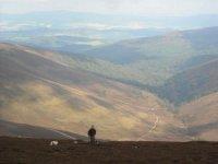 View down the Glen