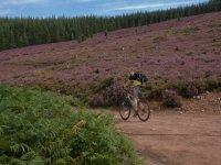 Mountain biking on estate