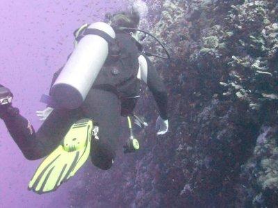 Indepth Diving