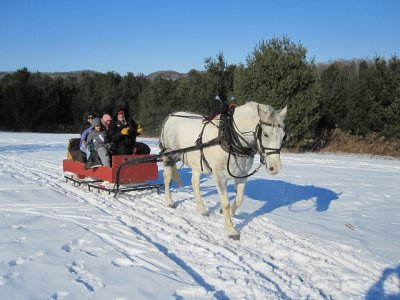 Escuela de Equitacion Vall D´Aran Paseos en Carro