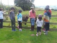 Children love ponies