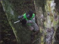 Tree sniping