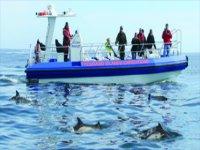 Ocean Ranger jet boat