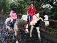 Lessons for beginners in Hill Farm Equestrian Centre