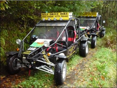 Quaddragon Road Buggies