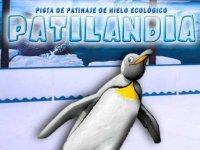 Patilandia Ice