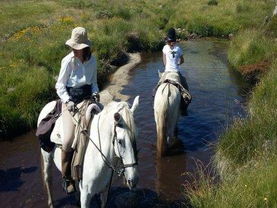 A caballo Palencia Montaña Palentina