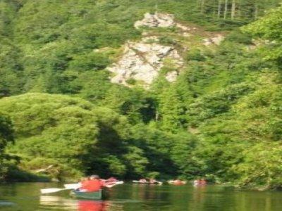 Tree Surfers Canoeing