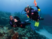 Learn to dive with mad about scuba