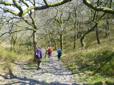 West Somerset Adventures Hiking