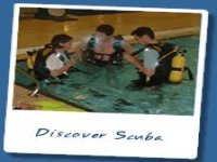 Diving courses at all levels