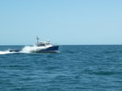 Lyme Bay Charters Boat Trips