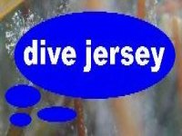 Dive Jersey