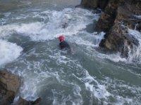 Swimming in the wild sea