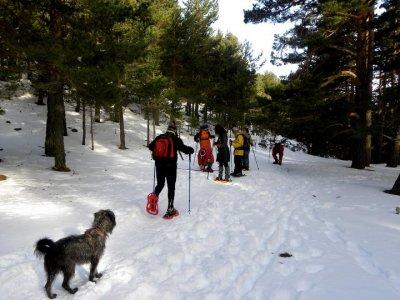 Snowshoes route Navacerrada half day