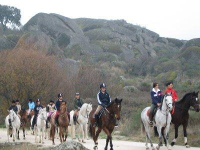 Horse riding on the Cáceres meadow, 1 hour