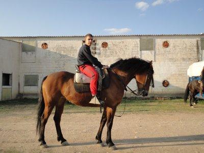 Horseback trip + lesson + lunch 90 min