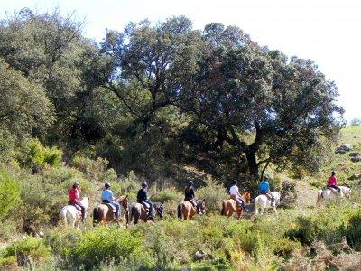 Horse riding route in Puerto de la Mujer. 4 h