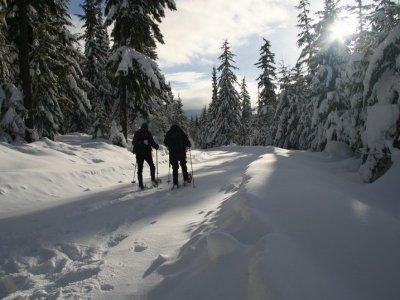 Big Foot Guías de Montaña