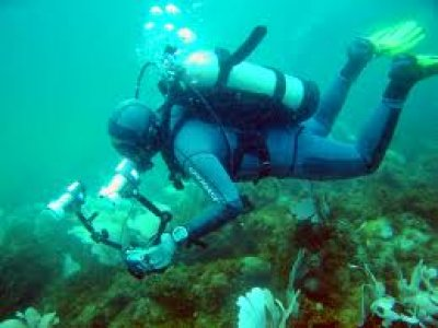 North East Dive Diving