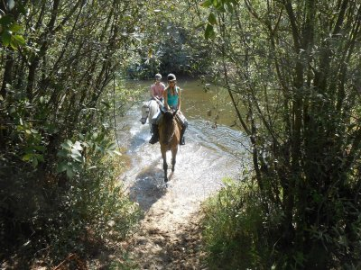 Party + horse route + picnic + canoe + food