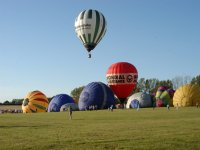 Hot air ballons annual meet