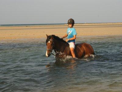 Club de Equitación Natural Guadacorte Rutas a Caballo