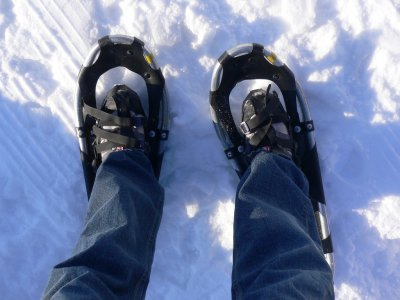 Snowshoeing in L'Alt Pirineu - 4 hours