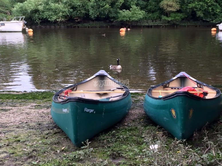 Couple of canoes