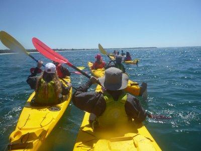 Black Crab Kayaks