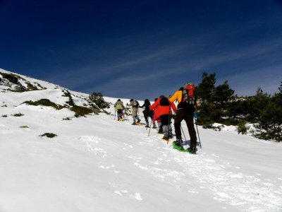 Snowshoeing in Navacerrada for an adult + a child