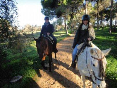 Sepcial Horse Riding Tour for Couples in Doñana