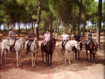 1h horse riding tour in Doñana