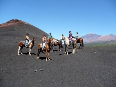 3h horse route in Icod de los Vinos, Tenerife
