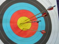 Bows and Arrows with 1610 Outdoor Adventure Archery