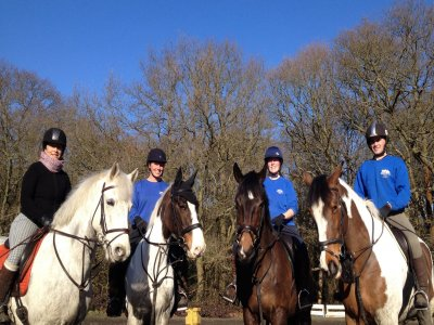 Horse Riding In Greater London