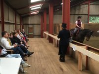 Horse riding Master class
