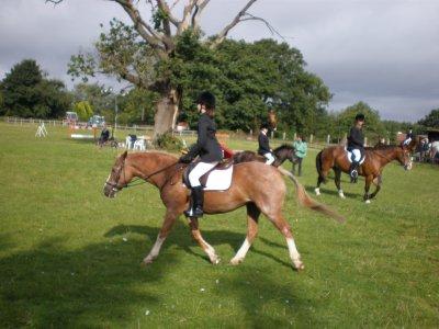 Truemans Heath Riding School