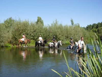 Horse Rising in Tormes Riverbank + Picnic - 2h