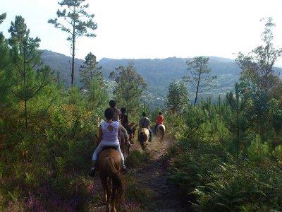HorsebackTtour, Pontevedra, 1 hour