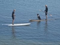 Paddle in sunny days