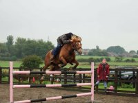 Showjumping practice at