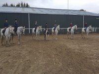 Dressage course at Tower Farm Riding Stables