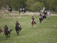 Open Trekking with Edinburgh & Lasswade Riding Centre
